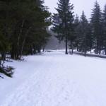 winterbilder-003